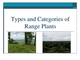 Types and Categories of Range Plants