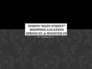 "Soho's  ""main street"" shopping location Spring  st.  &  wooster st."