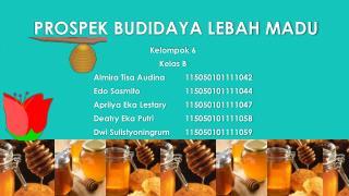 PROSPEK BUDIDAYA LEBAH  MADU