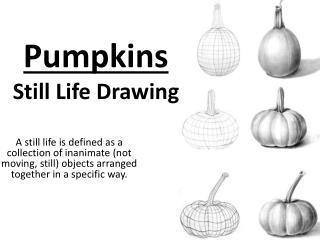 Pumpkins  Still Life Drawing