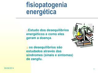 fisiopatogenia energética