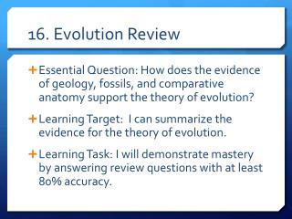 16. Evolution Review