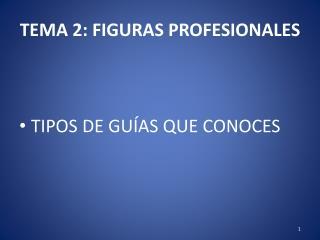 TEMA 2: FIGURAS PROFESIONALES