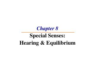 Chapter 8 Special Senses: Hearing  Equilibrium