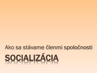 Socializácia