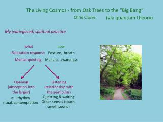 "The Living Cosmos - from Oak Trees to the ""Big Bang "" Chris Clarke"