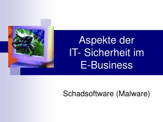 Aspekte der  IT- Sicherheit im E-Business