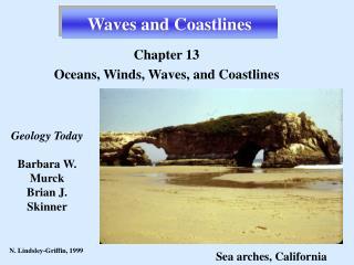 Waves and Coastlines