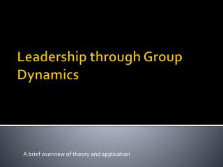 Leadership through Group Dynamics