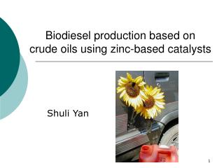 Biodiesel production based on  crude oils using zinc-based catalysts