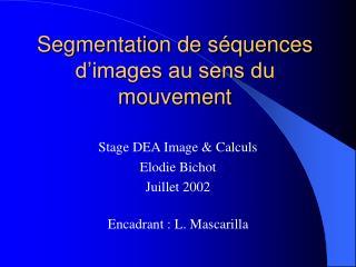 Segmentation de séquences d'images au sens du mouvement