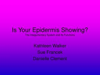 Is Your Epidermis Showing The Integumentary System and Its Functions