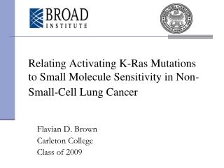 Relating Activating K-Ras Mutations to Small Molecule Sensitivity in Non-Small-Cell Lung Cancer