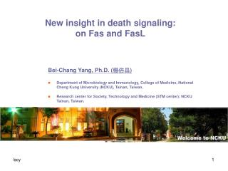 New insight in death signaling: on Fas and FasL