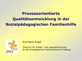 Prozessorientierte Qualitätsentwicklung in der Sozialpädagogischen Familienhilfe