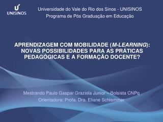 Mestrando Paulo Gaspar Graziola Junior – Bolsista CNPq Orientadora: Profa. Dra. Eliane Schlemmer