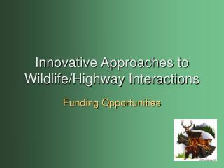 Innovative Approaches to Wildlife/Highway Interactions