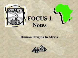 FOCUS 1 Notes