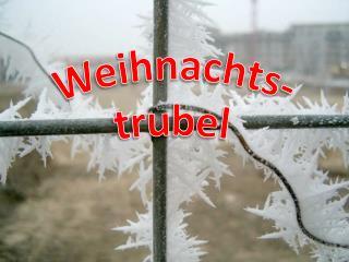 Weihnachts- trubel