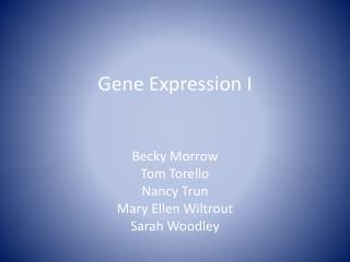 Gene Expression I