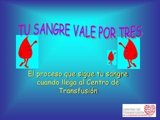 El proceso que sigue tu sangre cuando llega al Centro de Transfusión