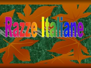 Razze Italiane