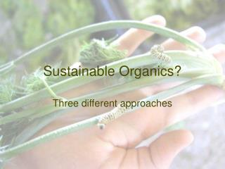 Sustainable Organics?