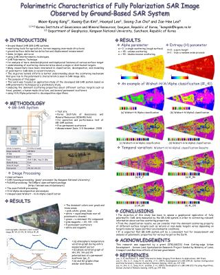 Polarimetric Characteristics of Fully Polarization SAR Image Observed by Ground-Based SAR System