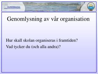 Genomlysning av v�r organisation