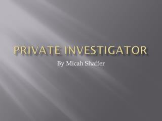 Private Investigator