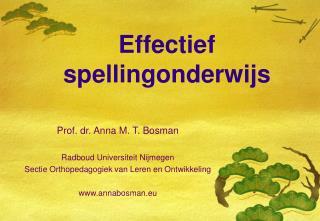 Effectief spellingonderwijs