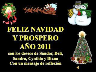 FELIZ NAVIDAD Y PROSPERO AÑO 2011 son los deseos de  Sándor , Deli, Sandra, Cynthia y Diana