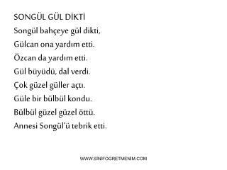 SONGÜL GÜL DİKTİ Songül bahçeye gül dikti, Gülcan ona yardım etti. Özcan da yardım etti.