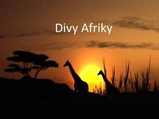 Divy Afriky