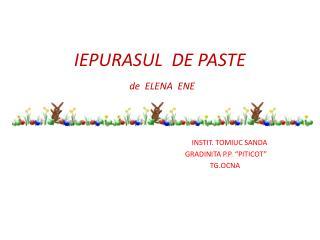 IEPURASUL  DE PASTE  de  ELENA  ENE