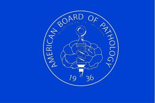 American Board of Pathology  Maintenance of Certification