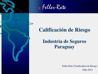 Calificación de Riesgo  Industria de Seguros Paraguay