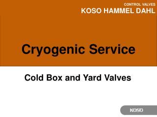 Cryogenic Service