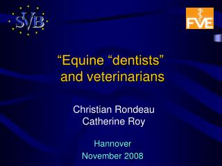"""Equine ""dentists""  and veterinarians"