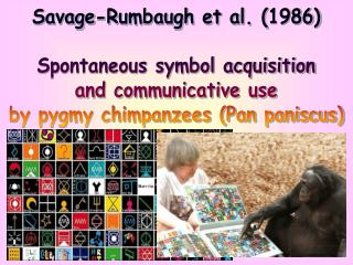 Savage-Rumbaugh et al. (1986) Spontaneous symbol acquisition and communicative use