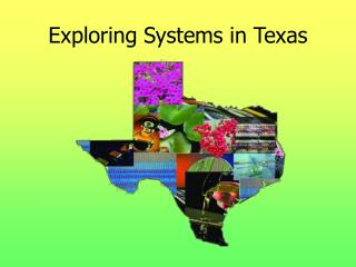 Exploring Systems in Texas