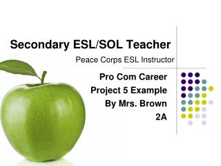Secondary ESL/SOL Teacher