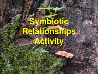 Symbiotic Relationships Activity