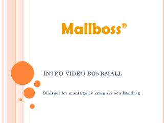Intro video borrmall