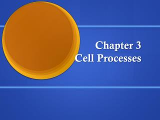 Chapter 3             Cell Processes