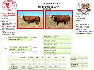 LOT 119: BMH080061 BM STEFFIE 06-27 P GEM TKP: 361 (4)