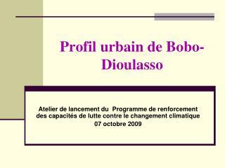 Profil urbain de Bobo-Dioulasso