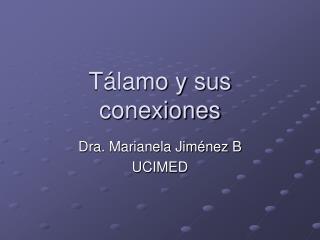 Tálamo y sus conexiones
