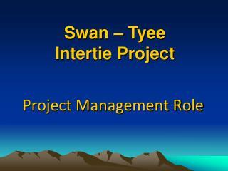 Project Management Role