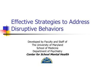 Effective Strategies to Address Disruptive Behaviors